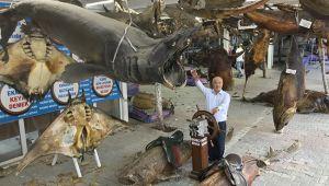 Türkiye Deniz Canlıları Müzesi kışa hazır