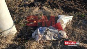 Yol kenarına atılmış 3 ölü köpek bulundu