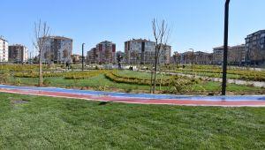 Şehir parkında çimlendirme çalışmaları tamamlandı