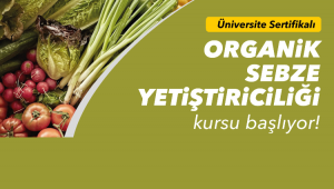 Organik sebze yetiştiriciliği kursu başlıyor