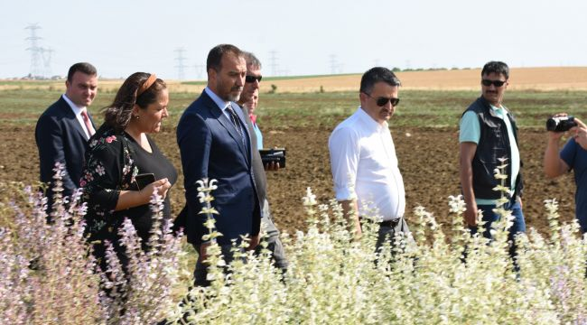 Tarım Bakanı Türam'ı ziyaret etti, mahalleleri gezdi