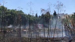 Yolçatı da anız yangını