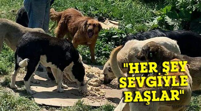 'Her şey sevgiyle başlar' ekibi bugün Silivri'ye geliyor!