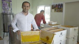 Silivri Belediyesi 450 kg bal üretti