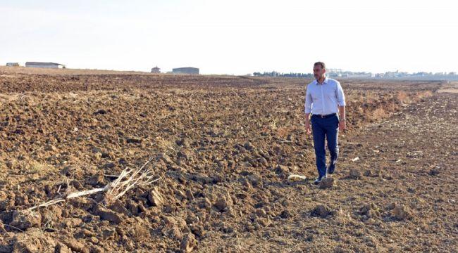 Silivri Belediyesi yeni dönemde 2 bin dönüm arazi ekecek