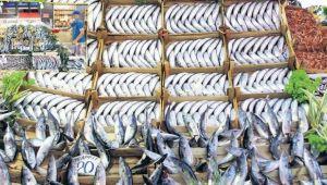 Balıkçı esnafına pandemi dönemi desteği