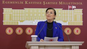 Tülay Kaynarca'dan Kavaklı açıklaması: CHP bu projeye neden karşı çıkıyor?