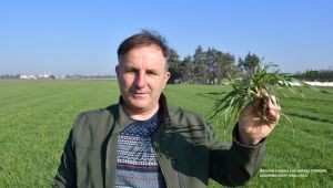 Yerli ve milli arpa tohumları toprakla buluştu