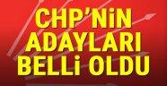 CHP milletvekili adayları kesinleşti