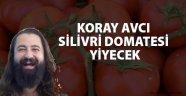 Değirmenköy Domates Festivali 12 Ağustos'ta