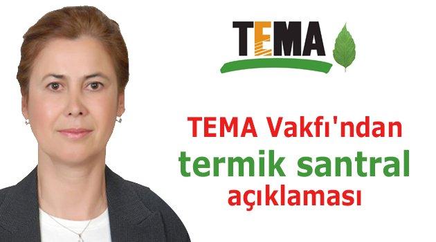 TEMA Vakfı'ndan termik santral açıklaması